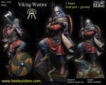 Wiking Warrior